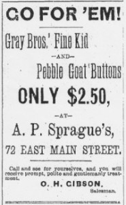 Source: Kalamazoo Gazette, November 13, 1880