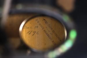 INS mandolin interior date